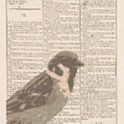 Abstract Sparrow On Dictionary Art Print
