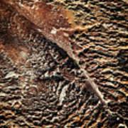 Abstract Surface Bumpy Stone Art Print