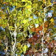 Abstract Tree Reflection Art Print
