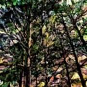 Abstract Trees 691 Art Print
