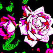 Abstract White Red And Pink Roses Art Print