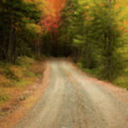Acadia Backroads Art Print