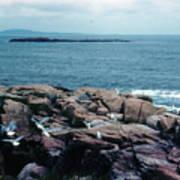 Acadia Park Maine Coast Art Print