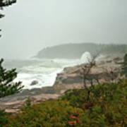 Acadian Storm Art Print