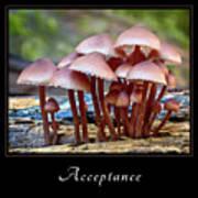 Acceptance 4 Art Print