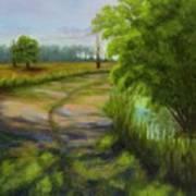 Ace Basin Pathway Art Print