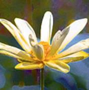 Achievement Of Enlightenment The Golden Lotus Art Print
