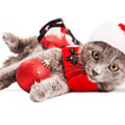 Adorable Christmas Kitten Over White Art Print