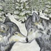 Affection In The Wild Art Print