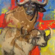 African Buffalo Art Print