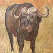 African Sighting Art Print