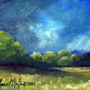 After The Storm Art Print by Linda L Martin