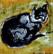 Afternoon Cat Art Print