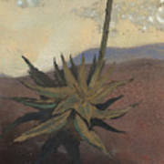 Agave Art Print by Fred Chuang