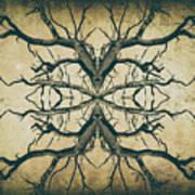 Aged Sepia Tree Dual Art Print