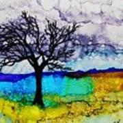 Changing Seasons - A 202 Art Print