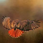 Airbrakes Art Print