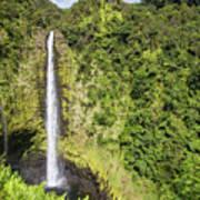 Akaka Falls, Hawaii Art Print