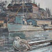 Akershus Seagull Art Print