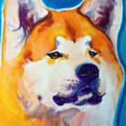Akita - Apricot Art Print