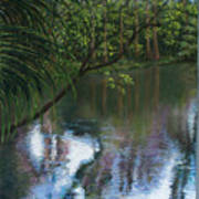 Alafia River Reflection Art Print