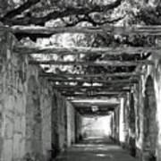 Alamo Corridor Art Print