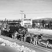 Alaska: Dog Sled, C1950 Art Print