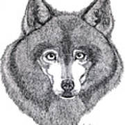 Alaskan Husky Art Print