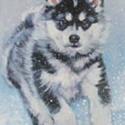 alaskan Malamute pup in snow Art Print