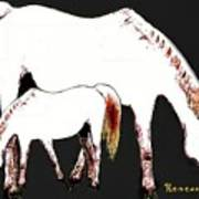 Albino Mare And Colt Art Print