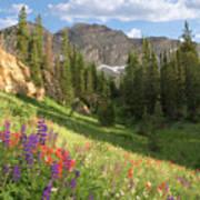 Albion Basin Wasatch Mountains Utah Art Print by Utah Images