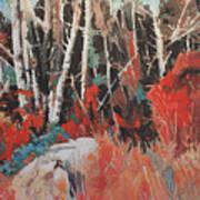 Alder Grove 3024 Art Print