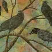 Alex's Crows Art Print