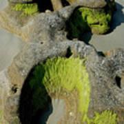 Alge On Beach Rock Formation Art Print