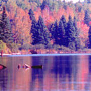 Algonquin Autumn Art Print