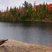 Algonquin Provincial Park Ontario Art Print