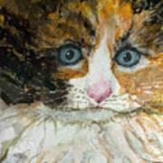 Ali Cat 1 Art Print