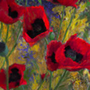 Alicias Poppies Art Print