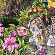 Alidas Garden Art Print