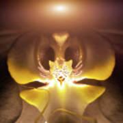 Alien Orchid Art Print by Wim Lanclus