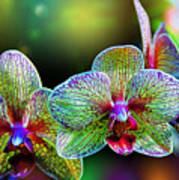 Alien Orchids Art Print by Bill Tiepelman