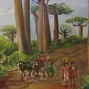 Alley Of The Baobabs Art Print