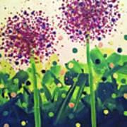 Allium Explosion Art Print
