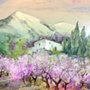 Almond Trees In Altea La Vieja Art Print