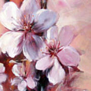 Almonds Blossom  12 Art Print