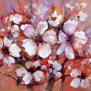 Almonds Blossom  8 Art Print