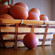Almost All My Eggs In One Basket Art Print