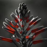Aloe In Bloom Art Print
