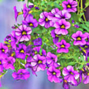 Aloha Purple Sky Calibrachoa Abstract I Art Print