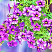 Aloha Purple Sky Calibrachoa Abstract II Art Print